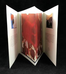 Inside Folds